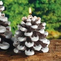 Snow Dusted Pinecone Christmas Candles, Set of 6 - Seasonal & Holiday Decorations