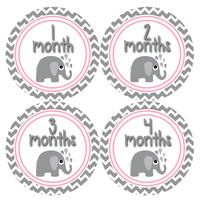 Baby Girl Monthly Baby Stickers Style #380