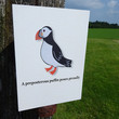 Puffin card, wonderful hand-illustrated preposterous puffin card complete with tongue-twisting alliterative phrase