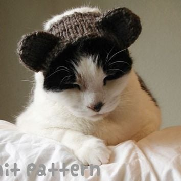 knitting pattern - teddy bear pet hat - halloween costume cat knit amigurumi kawaii small dog chihuahua disguise - (instant download)