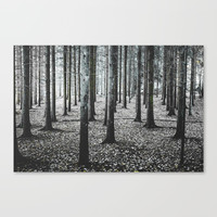Coma forest Canvas Print by happymelvin
