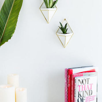 Small Triangle Wall Planters Set Of 2