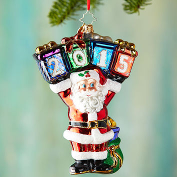 A Year to Display Christmas Ornament - Christopher Radko