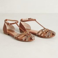 Lissome Sandals by Seychelles Brown 10 Sandals