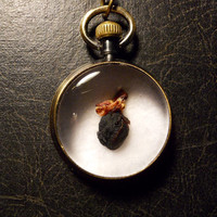 Chipmunk Heart Ossuary Mummified Taxidermy Specimen Magnifier Necklace