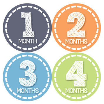 Baby Boy Monthly Milestone Stickers Style #369