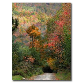 Country Road in Autumn 2017 Nature Calendar Postcard