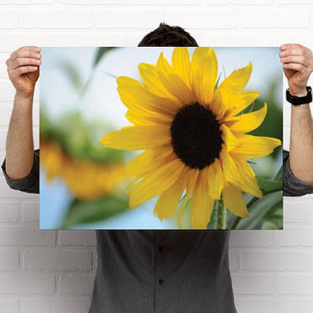 Sunflower and Blue Skies Fine Art Photography Print - 18 X 24