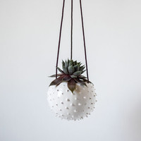 Ceramic hanging planter/ air planter/ succulent planter/ hanging flower pot/ white pot/ ceramic flower pot