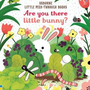 Usborne Books & More. Are You There Little Bunny?