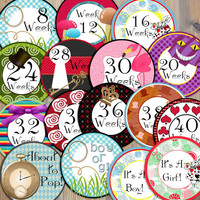 16 Alice in Wonderland Inspired Maternity Mother to Be New Mom Weekly Milestone Stickers