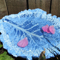 Concrete Cabbage Leaf Bird feeder, Bird bath, Blue shades, Yard Decor, yard art