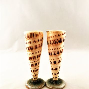 "Small Conch Sea Shell Candlestick Holders Round Wooden Base 4.75"" Set of 2"