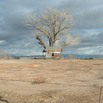 Arizona Desert Photo in Northern Arizona High Desert Shack Lonely House Abandoned Haunting Primative Stark Beauty Tree Clouds Nature