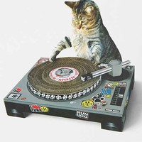 Cat Scratch DJ Deck- Assorted One