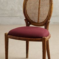 Armless Cane Back Dining Chair by Anthropologie