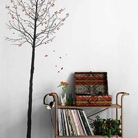 Seasons Wall Decal- Brown Multi One