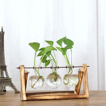 Creative Home Vase Hydroponic Plant Transparent Vase Wooden Frame Coffee Shop Room Glass Tabletop Plant Decor