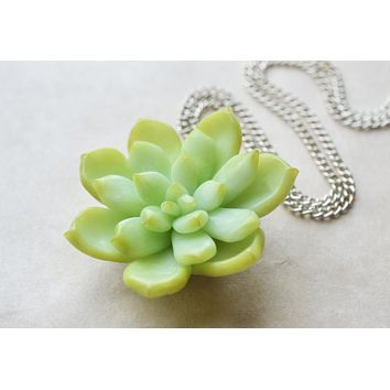 Green Miniature Succulent Necklace, Polymer Clay Miniature