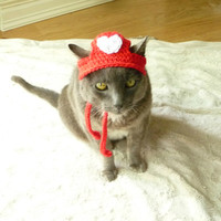 Cat Heart Hat Small Dog Heart Hat Small Dog Hat Hats for Cats Hats for Dogs Cat Hat Dog Hat Cat Clothes Dog Clothing Cat Costume Pet Costume