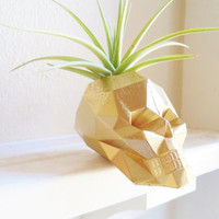 Geometric skull planter, modern skull, Halloween decor, unique skull, mini air plant holder