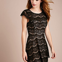 Eyelash Lace Sheath Dress