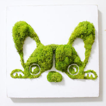 French Bulldog Moss Art, Wall Decor, Vertical Garden, Terrarium, Holiday Gift, Moss Frame