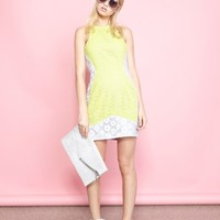 Lace Block Fitted Dress - Acid Lime/Grey