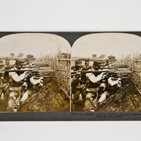 Keystone Stereoview Japanese Infantry Ready to Fire, Russo-Japanese War, LeSingley 1904