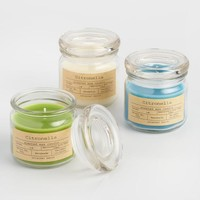 Citronella Apothecary Jar Candles Set of 3