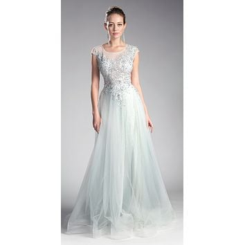 Cap Sleeved Illusion Appliqued Long Formal Dress Ice-Silver