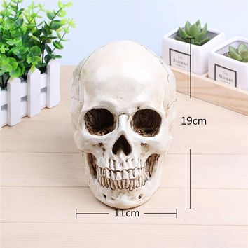 Skull Skulls Halloween Fall P-Flame White Human  Planter Archaize Garden Storage Pots Resin Finish Skeleton Container Flowerpots For Decoration Calavera