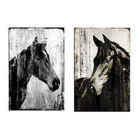 Equine Portrait Giclees | Ballard Designs