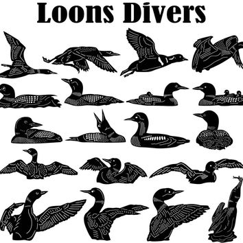 Loons Divers