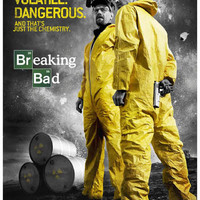 Breaking Bad Walter and Jesse Unstable Poster 11x17