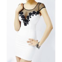 Hot Splicing Grenadine Lace trimming Design Scoop Neck Women's Slim Fit Club Dress