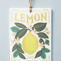 Rifle Paper Co. Lemons 2019 Calendar