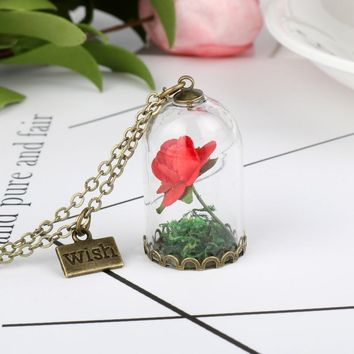Beauty and The Beast Enchanted Rose Flower Glass Wish Bottle Vintage Retro Pendant Necklace for Women Girl Friend Best Gift -30