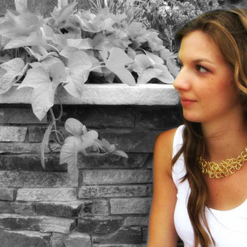 Golden Collar Necklace Gold Wire Jewelry Gold Collar