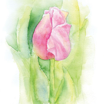 Pink Tulip Watercolor