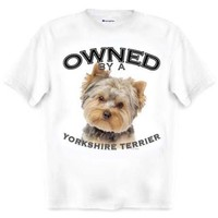 Yorkshire Terrier Yorkie Owned By Adult T Shirt