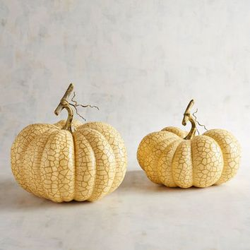 Cream Crackle Pumpkins