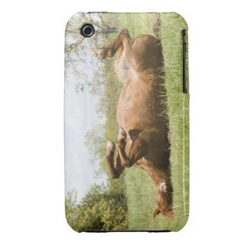 Horse Dancing on it's Back for Ipod Case/Cover