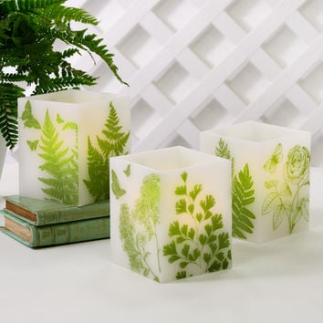 Fern Lantern Candles design by Two's Company