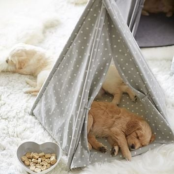 Northfield Canvas Pet Teepee