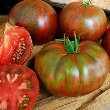 Berkeley Tie Dye Pink, artisan tomato seeds. fabulous flavor, flashy stripes, new heirloom, non GMO, superstar, Brad Gates, scarce seeds yum