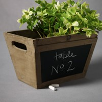 In Writing Planter in  the SHOP Decor Decorating at BHLDN