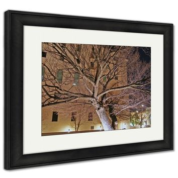 Framed Print, Survivor Tree Oklahoma City National Memorial