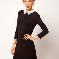 Black and white Flower Lace Collar Sleeve Dress