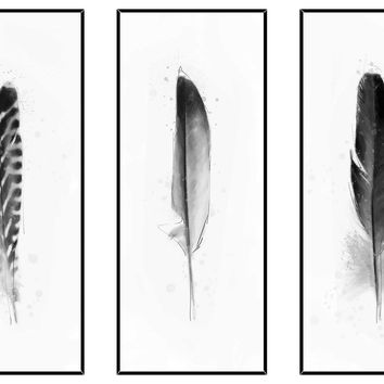 Black and White Feathers Triptych, Paintings